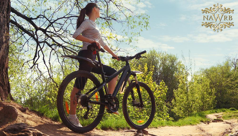 Blog_bicycle